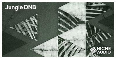 Jungle DNB (Niche Audio)