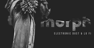 Morph – Electronic Dust & Lo Fi (Audiomodern)