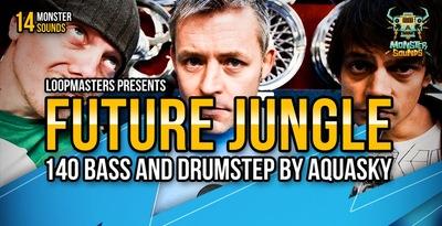 Aquasky - Future Jungle & Drumstep (Monster)
