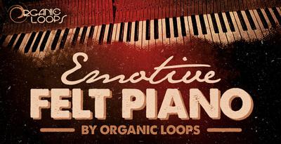 Emotive Felt Piano (Organic Loops)