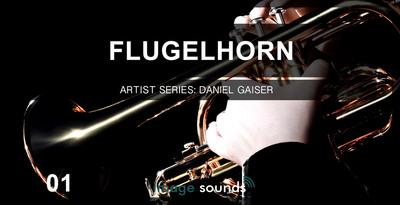 Image Sound Presents - Flugel Horn 1 (Image Sounds)