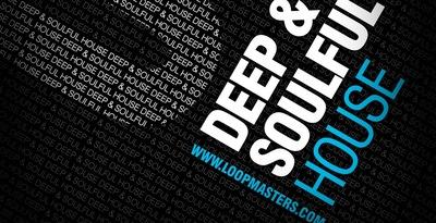 DJ Mixtools 04 - Deep and Soulful House (Loopmasters)
