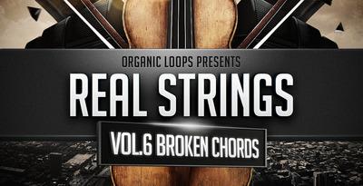 Real Strings Vol 6 - Broken Chords (Organic Loops)