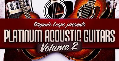 Platinum Acoustic Guitars 2 (Organic Loops)