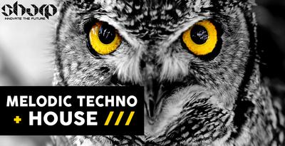 Melodic Techno & House (SHARP)