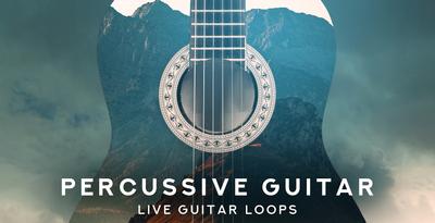 Percussive Guitar (Black Octopus)