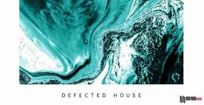 Defected House (Engineering)