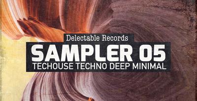 Delectable Records Label Sampler 05 (Delectable)