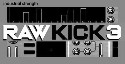 Raw Kick 3 (Industrial)
