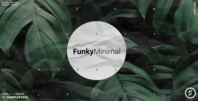 Funky Minimal (Samplestate)