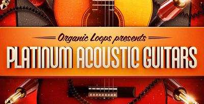 Platinum Acoustic Guitars (Organic Loops)