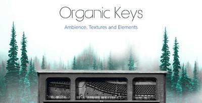 Production Master - Organic Keys (Production)