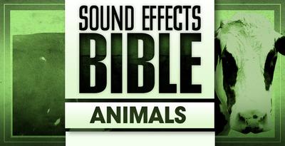 Animals (Sound Effects)
