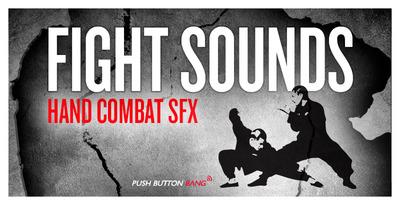 Fight Sounds - Hand Combat SFX (Push Button)