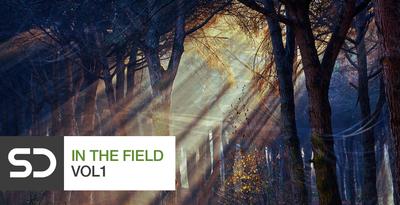 In The Field Vol 1 (Sample)