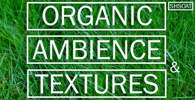 Organic Ambience & Textures (Shamanstems)