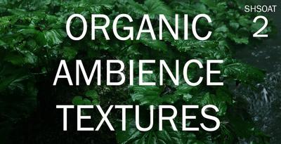 Organic Ambience & Textures 2 (Shamanstems)